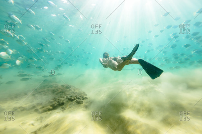 Woman swimming undersea with fish