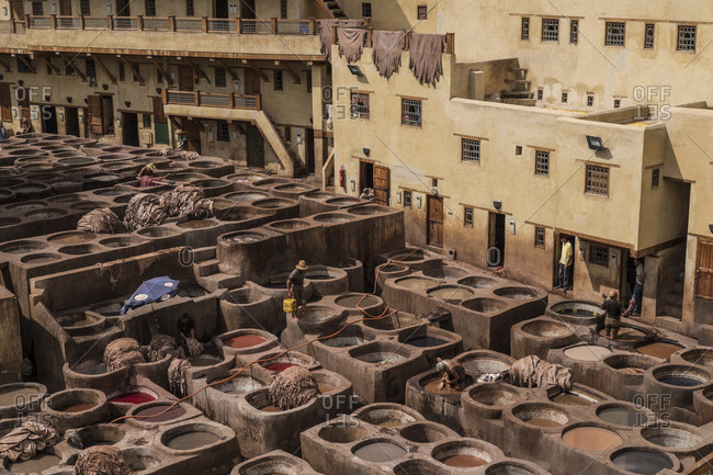 Workers in the Chouara Tannery in the medina of Fes, Morocco