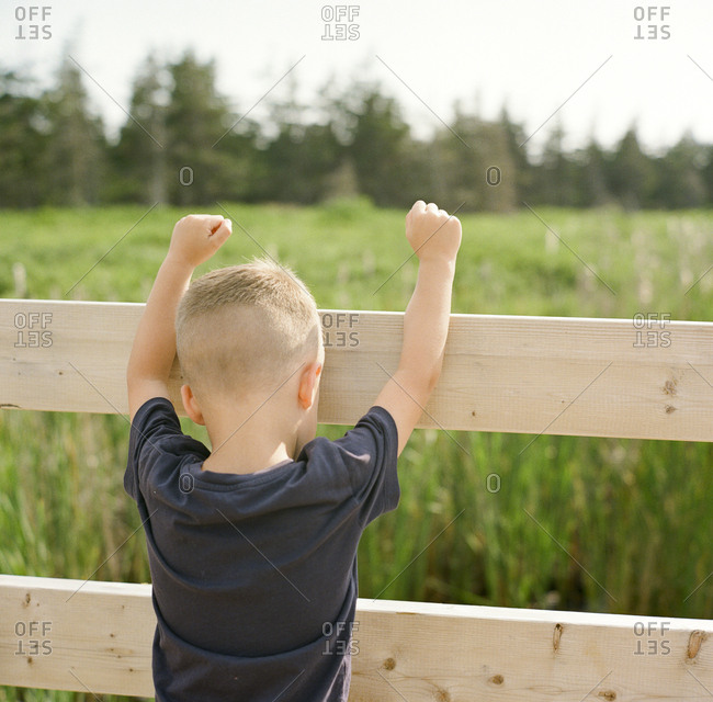 Blonde boy climbing on a fence in a field