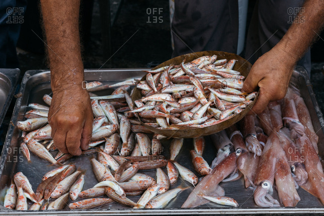 Man filling bowl with fish in a market in Catania, Italy
