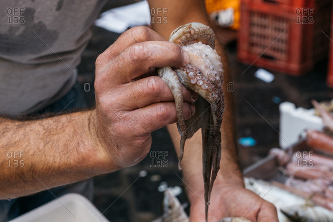 Man holding squid in a market in Catania, Italy