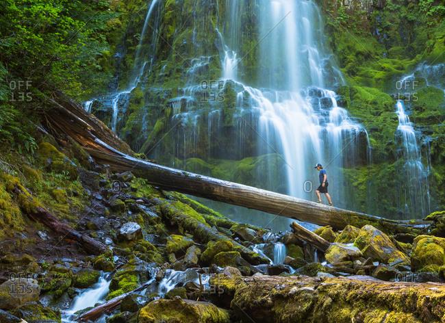 Man walks on a log near Proxy Falls in Oregon