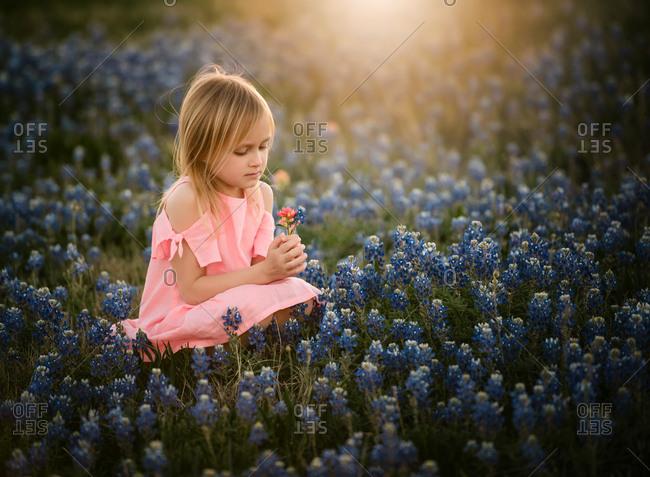 Little blonde girl picking flowers in a field