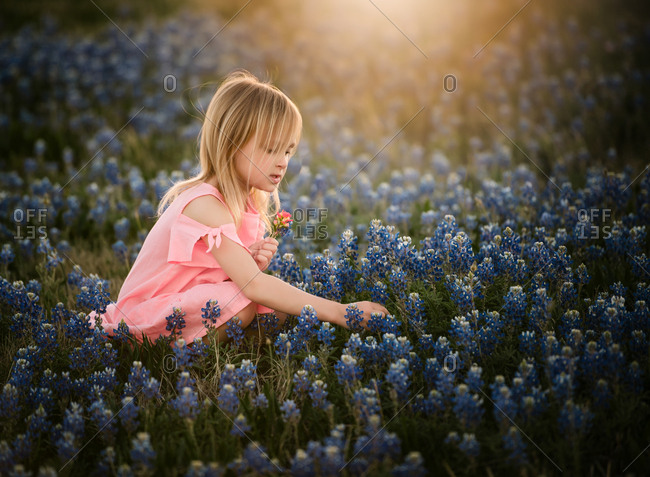 Young blonde girl picking flowers in a field