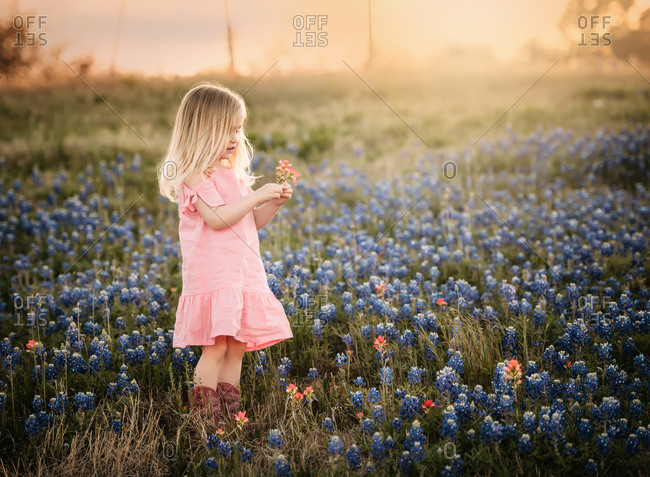 Young blonde girl picking wildflowers in a field
