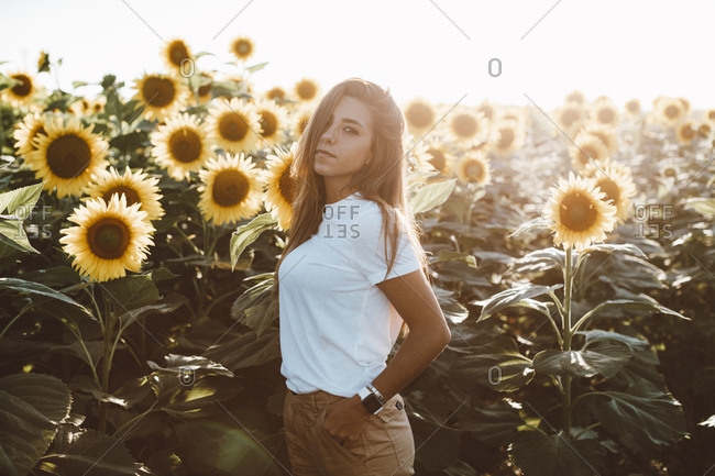 Young woman standing in the sunlight in a field of sunflowers