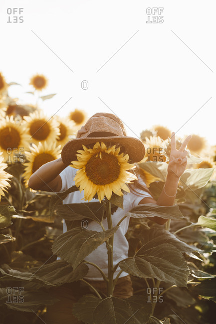 Woman holding hat over sunflower and making peace sign with hand