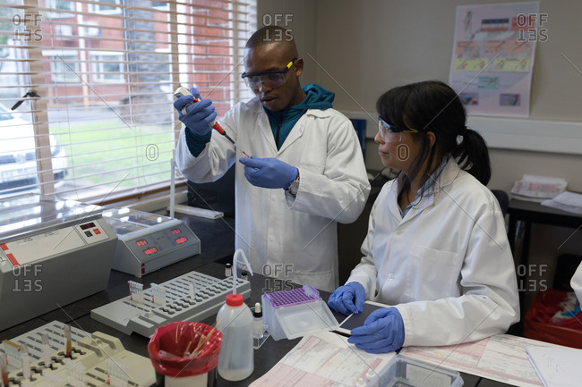 Laboratory technicians analyzing blood sample in blood bank