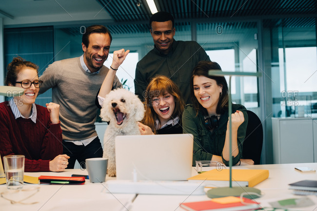 Excited business team with dog at desk in creative office