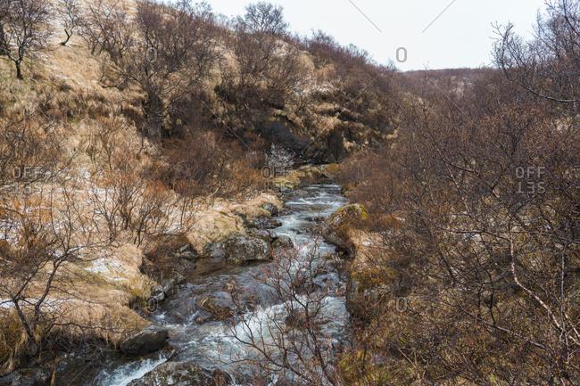 Picturesque mountain stream in Skaftafell, Iceland and Vatnajokull