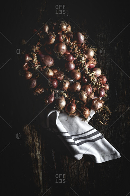 Bouquet of fresh red onions. Flat Lay, from above, garlic