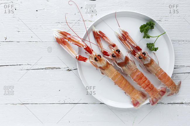 Three fresh shrimps lying on plate near sprig of parsley on white timber tabletop.
