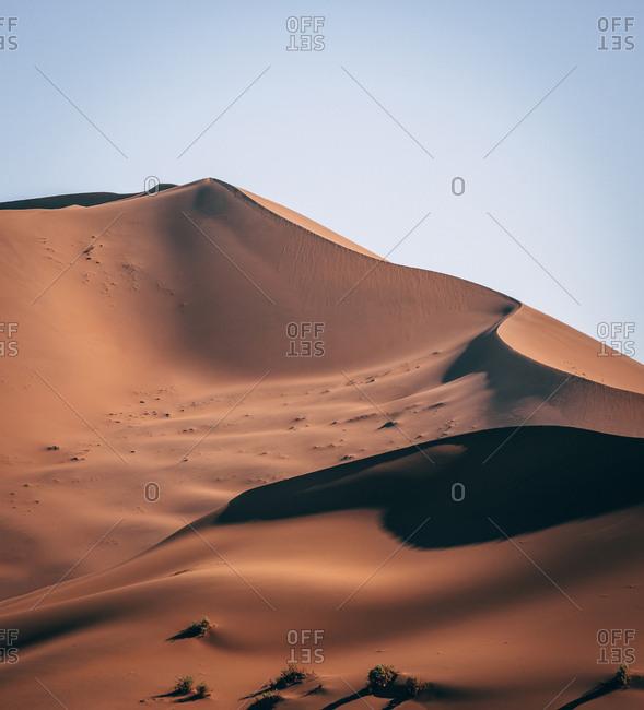 Dune in sunny day in Namibia Desert