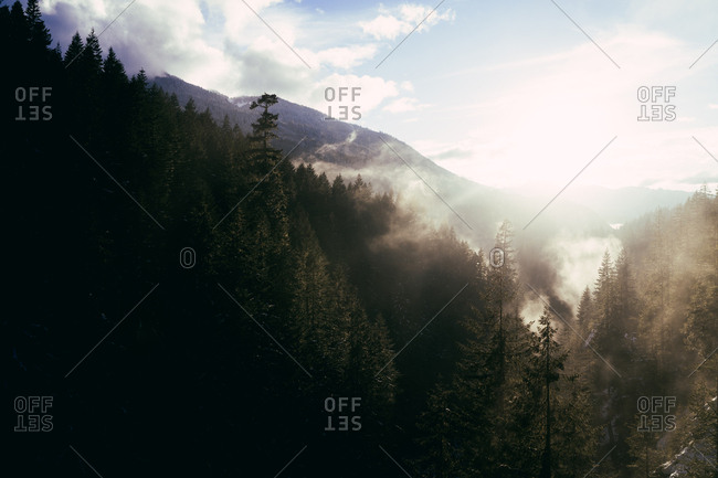 Perspective view of fog in sunlight above rocky snowy valley with stream flowing down among coniferous trees.