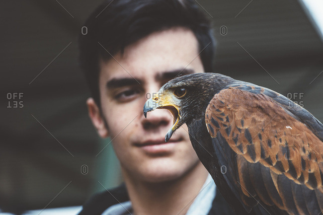 Man looking at falcon on hand
