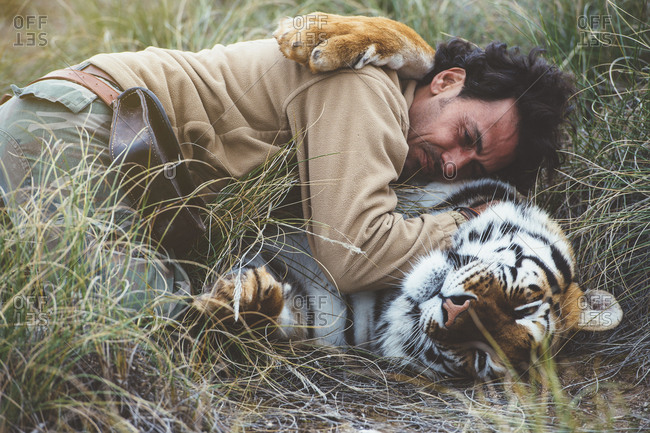 Side view of man lying with tiger and stroking it in green grass.