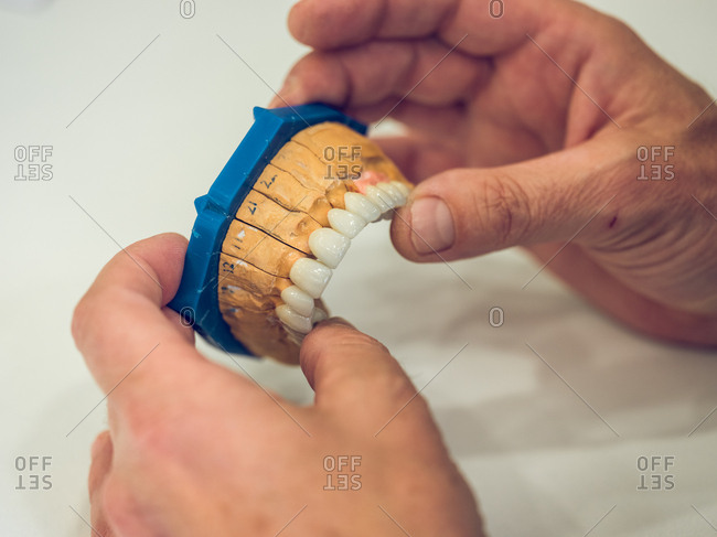 Crop hands of dental technician holding nice denture over table while working in laboratory.