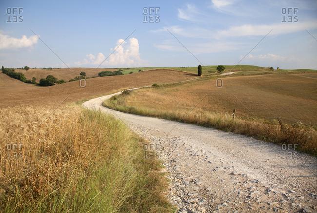 Road through farmland near Siena, Italy