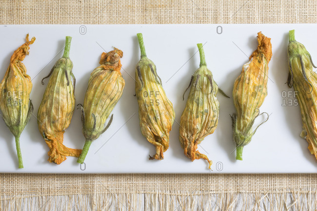 Stuffed squash blossoms arranged in a row on a plate