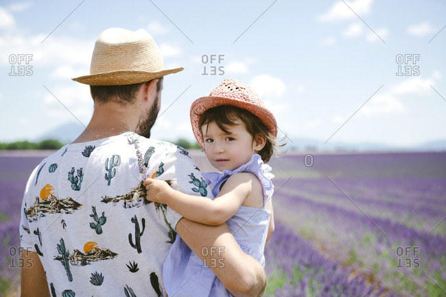 France- Provence- Valensole plateau- father and daughter in lavender fields in the summer