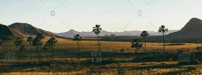 Brazil- Alto Paraiso de Goias- Landscape at dawn
