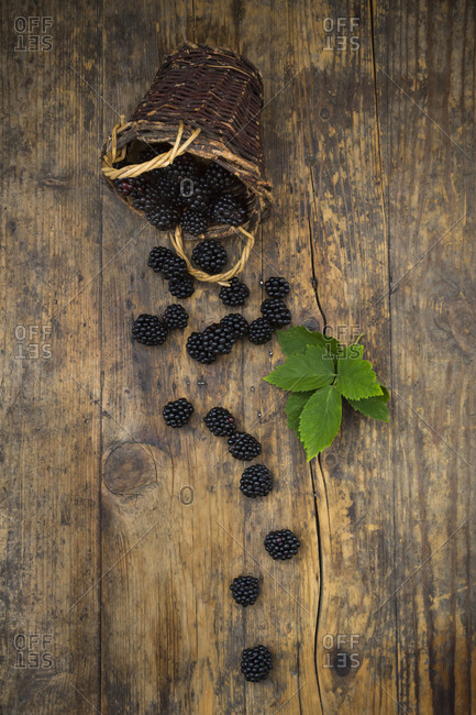 Wicker basket of organic blackberries and leaves on wood
