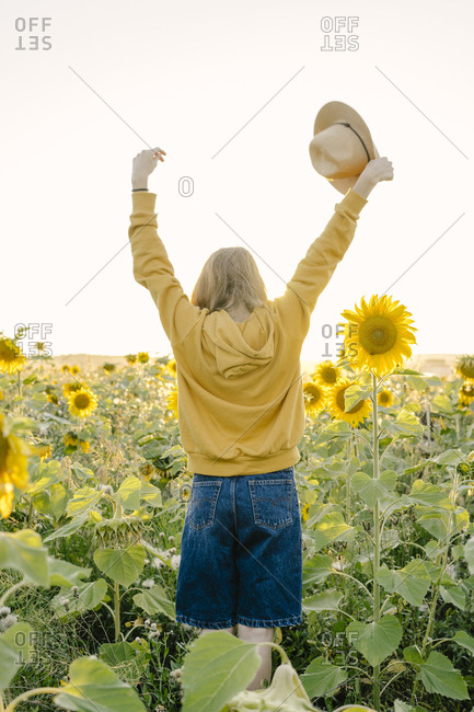 A young woman standing with her back raised her hands over a field of sunflowers