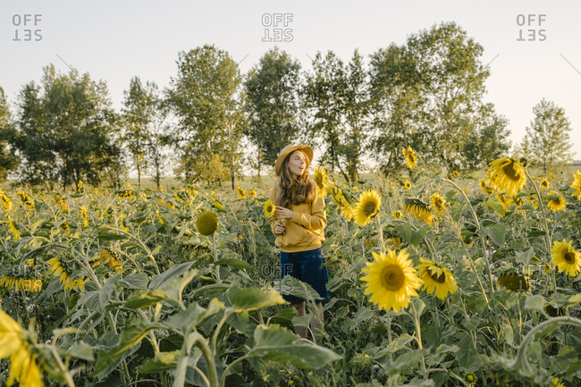 Beautiful young woman holding a sunflower