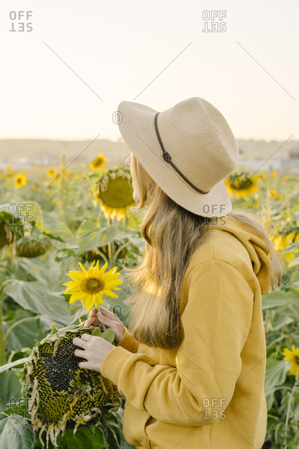 Portrait of a beautiful young woman standing with her back on the field with sunflowers