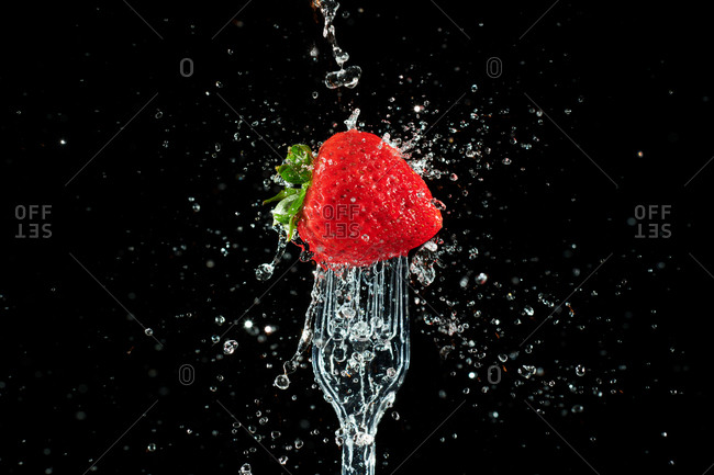 Water splashes on to a fresh strawberry on a fork
