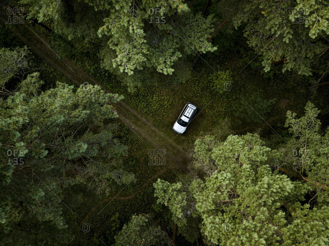 Aerial view of dirt road surrounded by dense green forest