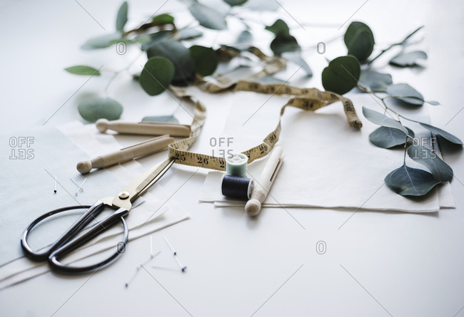 Sewing tools on a white background with eucalyptus