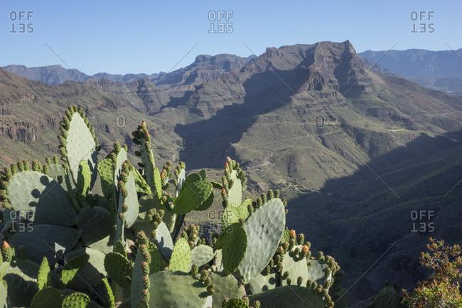 Mirador Degollada de las Yeguas, Fataga Valley, Gran Canaria, Canary Islands, Spain, Atlantic, Europe