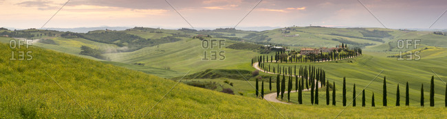 Panoramic view of sunset over the Agriturismo Baccoleno and winding path with cypress trees, Asciano in Tuscany, Italy, Europe