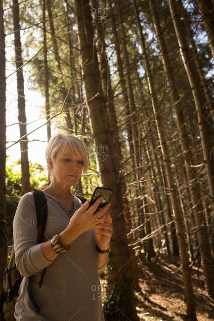 Woman using mobile phone in the forest on a sunny day