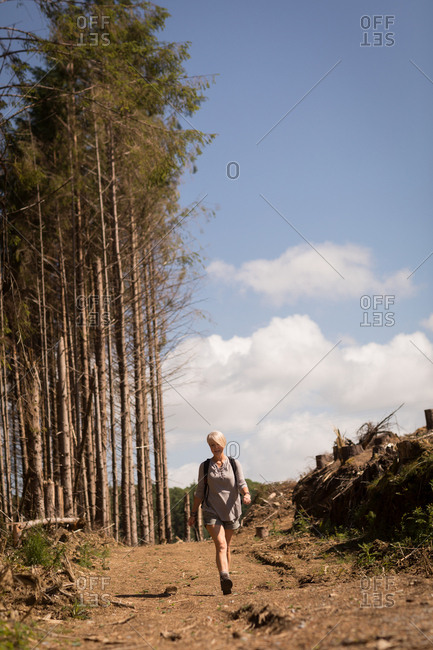 Woman walking in the forest on a sunny day