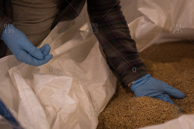 Mid section of female worker checking grains at warehouse
