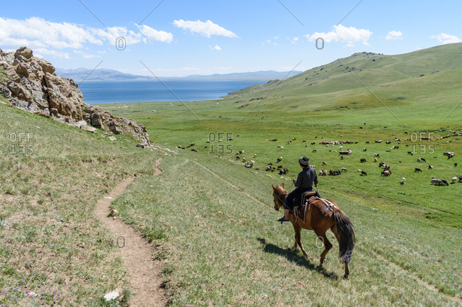 Kyrgyzstan, Asia - July 25, 2018: Man riding horse beside field of goats