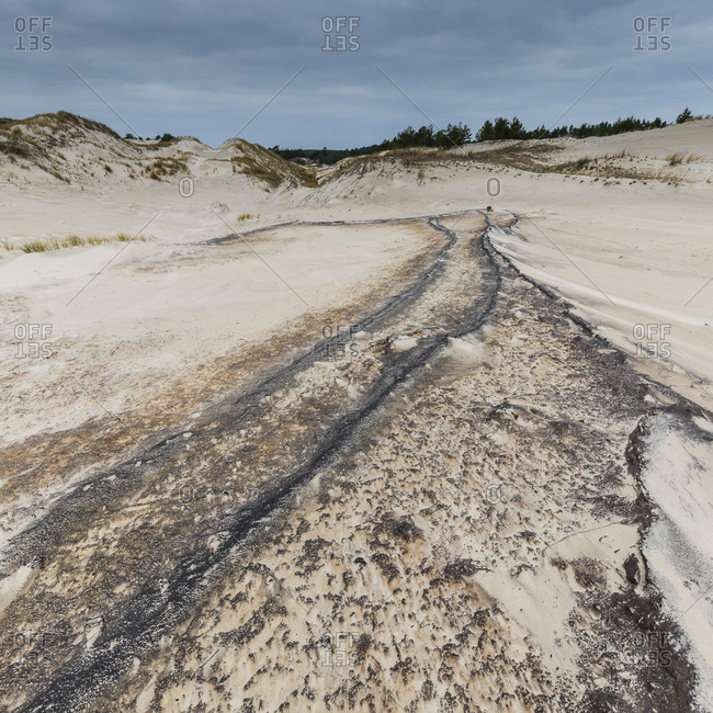 Europe, Poland, Pomerania, Moving dunes in the Slowinski National Park