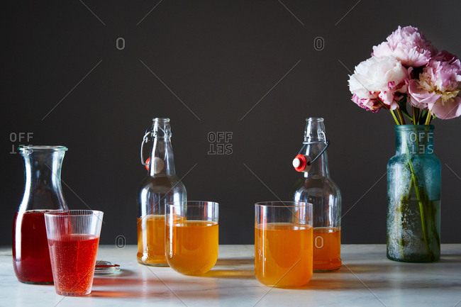 Kombucha photo from the Offset Collection