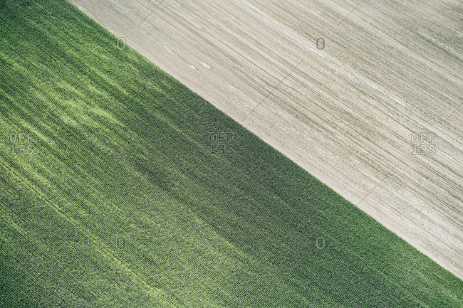 USA- Corn field and freshly harvested field in Western Nebraska