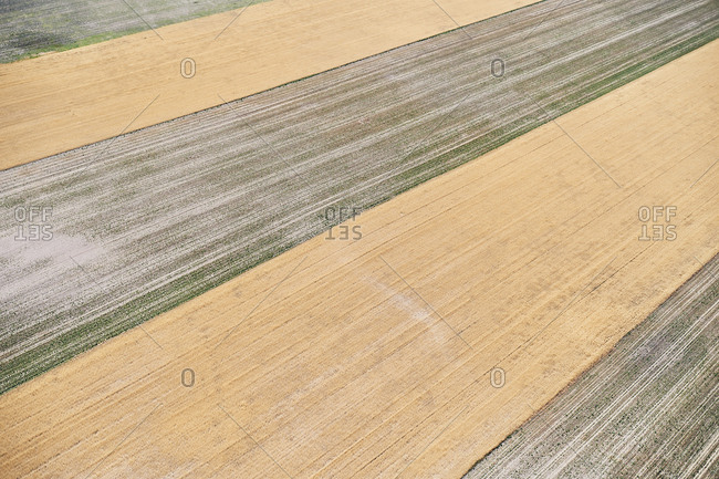 USA- Aerial photograph of contour farming after harvest in Western Nebraska