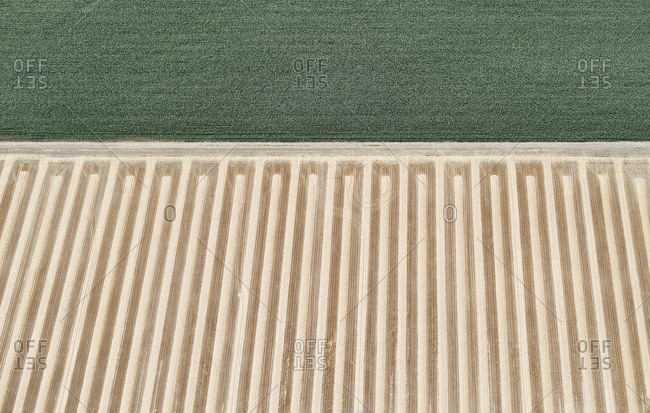 USA- Aerial of a harvested farm field next to a field of corn