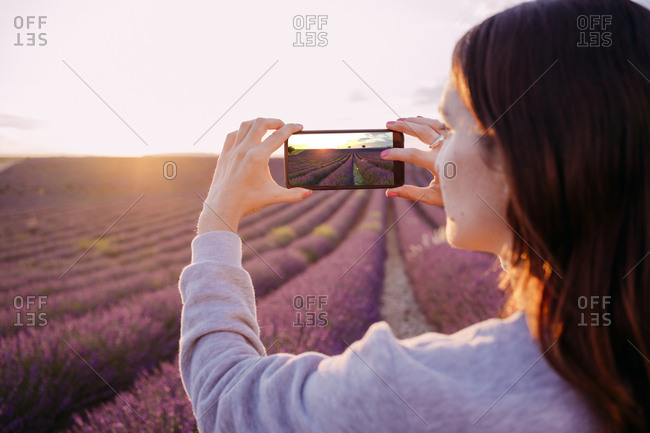 France- Valensole- woman taking photo of lavender field at sunset