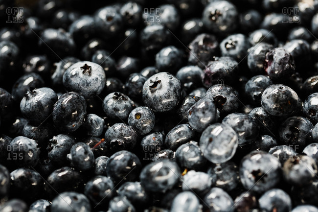 Close up of wet blueberries
