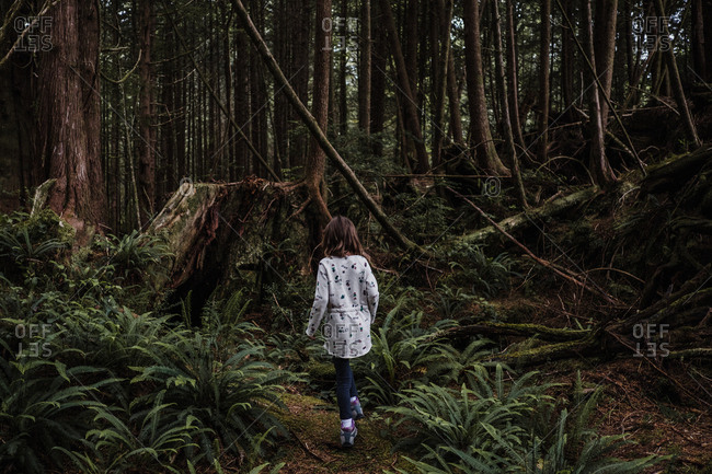 Girl hiking in forest, Tofino, Canada