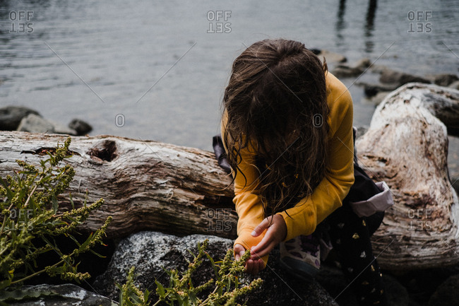 Girl discovering nature by sea, Tofino, Canada