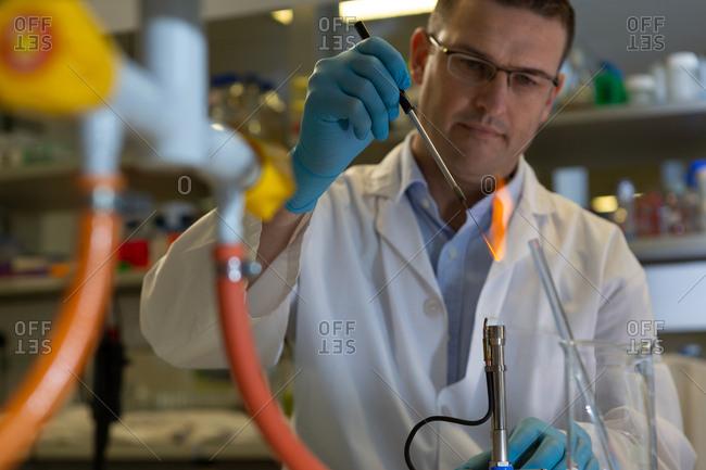 Attentive male scientist experimenting in laboratory