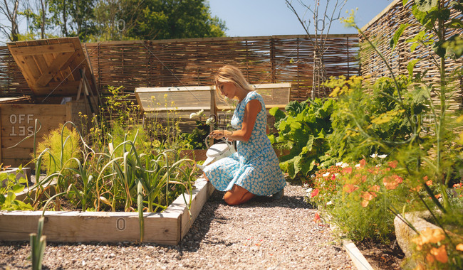 Woman watering plants in the garden on a sunny day