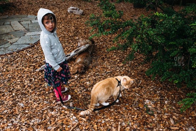 Little girl walking a cat on a leash